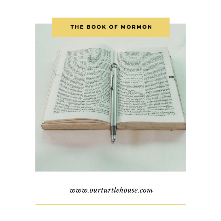 Read more about the article The Book of Mormon