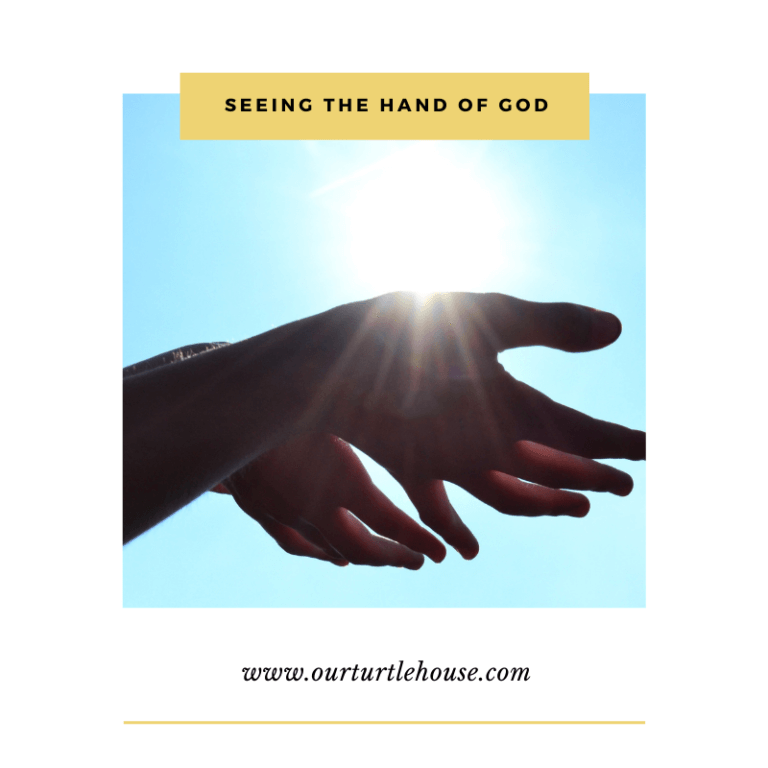 Read more about the article Seeing The Hand of God