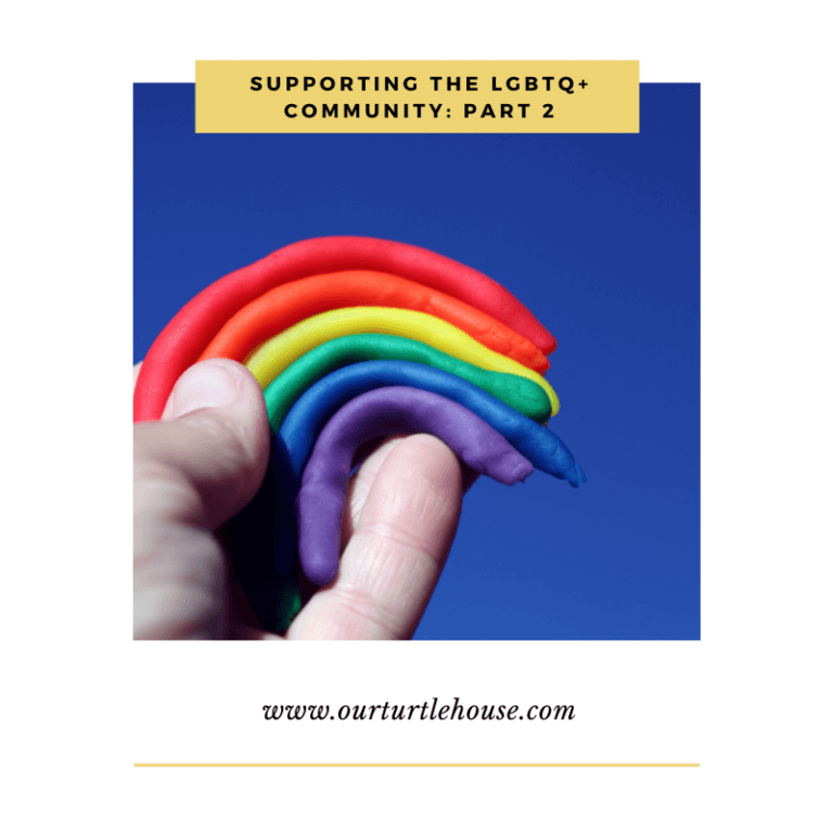 Read more about the article Supporting The LGBTQ+ Community: Part 2